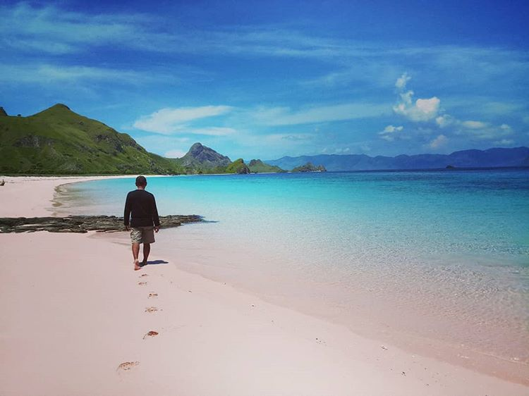 Pantai Pink di Lombok